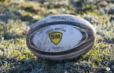 Le rugby amateur landais stoppé